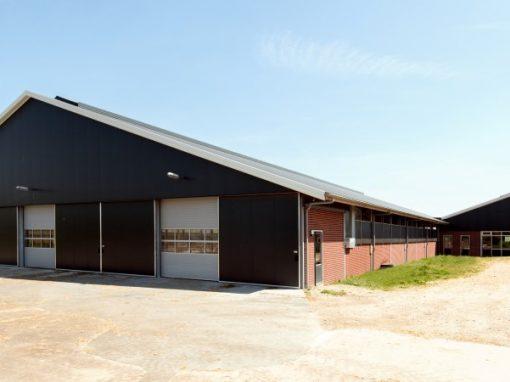 Nieuwbouw melkgeitenstal te Mirns